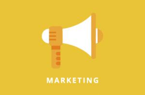 card_palo_marketing